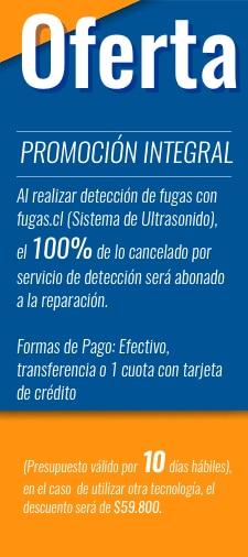 Promoción Integral